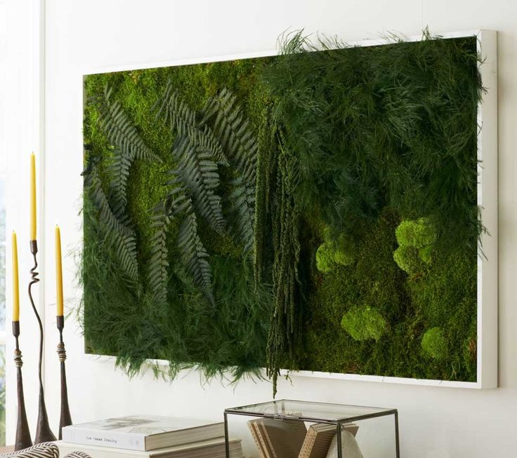 moss and fern wall art from viva terra indoor places spaces pinterest tropical art. Black Bedroom Furniture Sets. Home Design Ideas