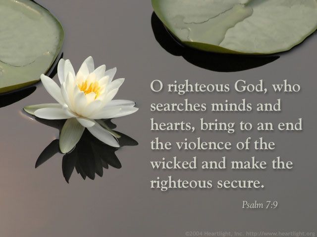 Psalm 7:9 -- O righteous God, who searches minds and hearts, bring to an end the violence of the wicked and make the righteous secure.