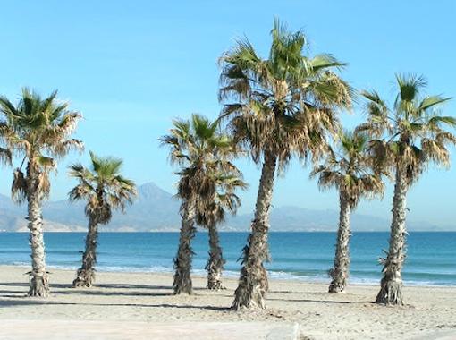 "Beach in Alicante (Spain) near Camping ""Costa Blanca"""