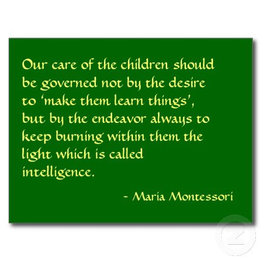 """""""Our care of the child should be governed, not by the desire to make him learn things, but by the endeavor always to keep burning within him that light which is called intelligence.""""    Maria Montessori"""