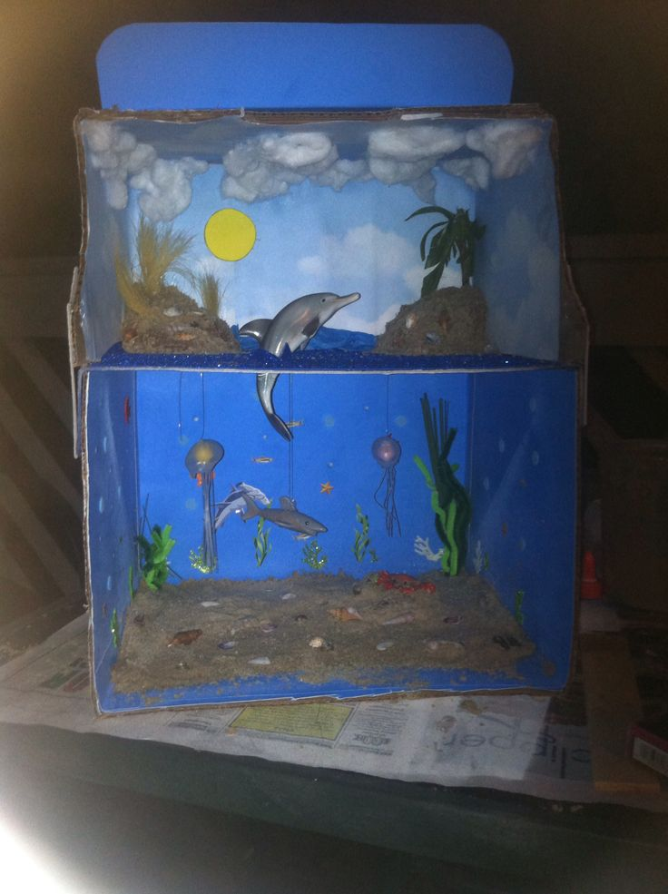 Atlantic Ocean diorama. So proud!