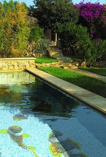 Available at tilejunket designer showroom 2a gordon ave for Pool design geelong