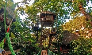 Groupon - 3-, 4-, 5-, or 7-Night Adventure or Dining Package for Two at Dominican Tree House Eco Village in the Dominican Republic in Samaná, Dominican Republic. Groupon deal price: $599