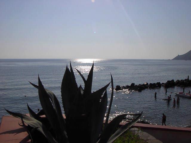 Pisciotta, panorama