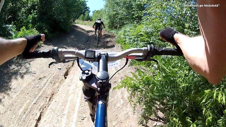 Aventuri pe bicicleta : Moneasa Mtb Maraton 2014