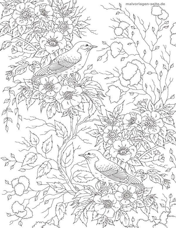 Malvorlage Erwachsene Vogel Mit Blumen