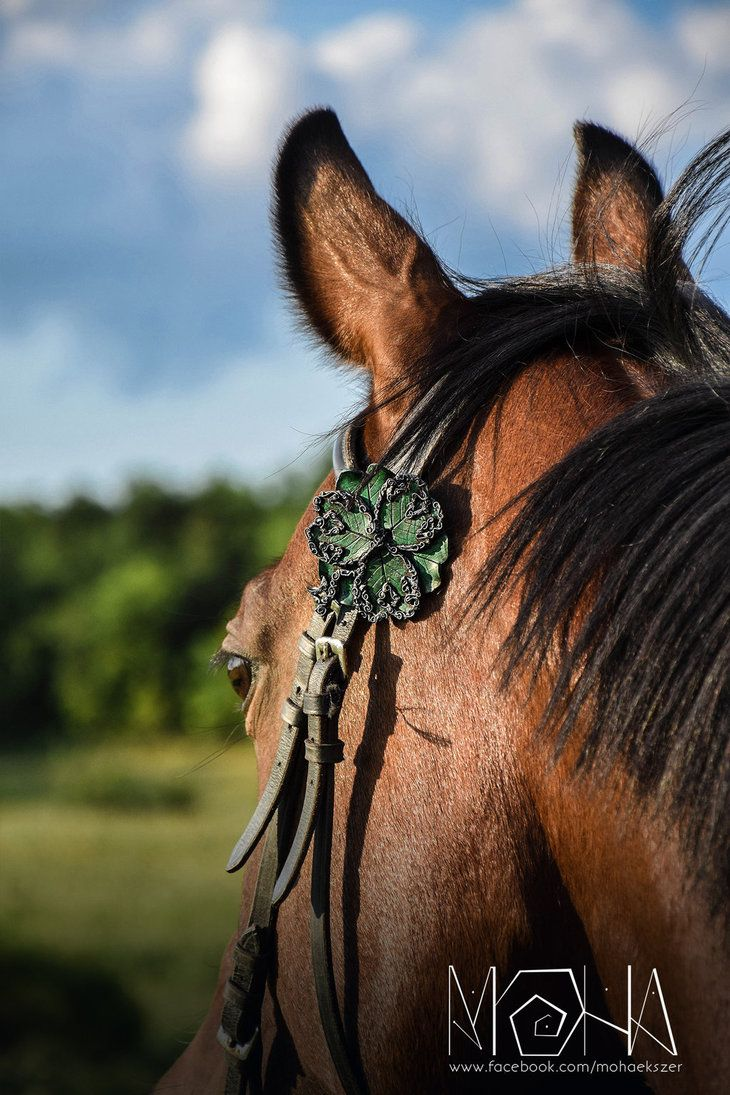 Six-leaf clover bridle ornament - (c)Moha by Moha-jewelry on DeviantArt