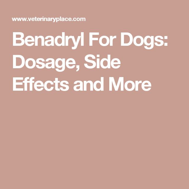 Calculator For Giving Dogs Benadryl