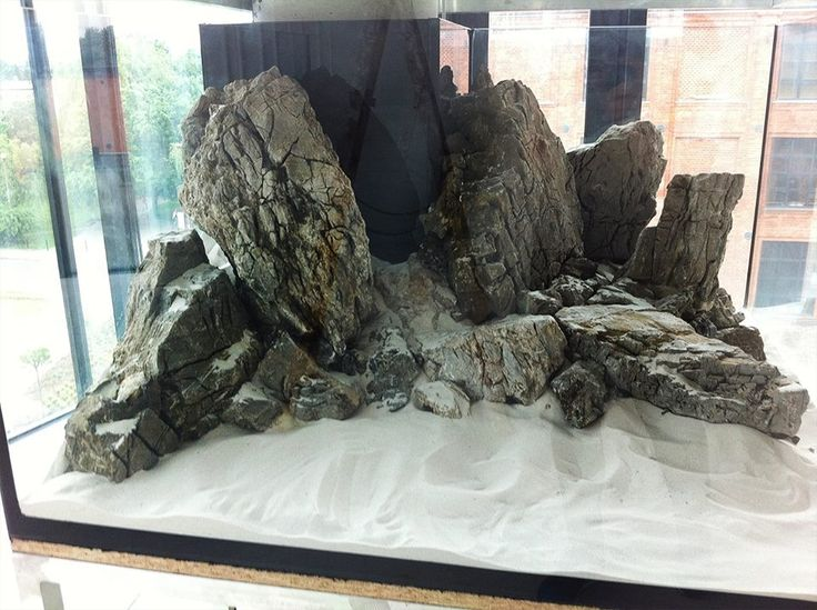 Iwagumi. I like the idea of bunching the rock into a back corner. A lot of aquarium real estate is under utilized in the corners, normally.