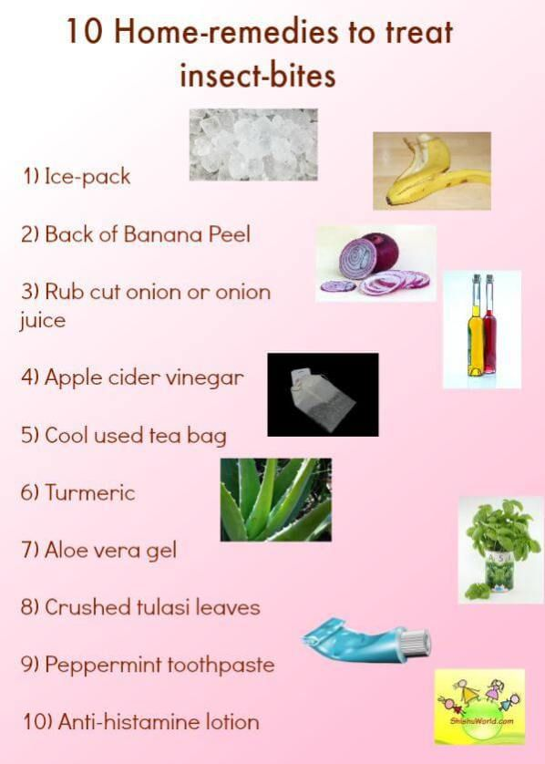 First Aid/ Home Remedies for Insect Bites | Home Remedies