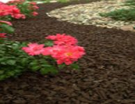 Rubberscape's bonded rubber mulch is made from recycled tyres, reducing the carbon footprint of every project it is used on and serving as a direct replacement for natural mulch.
