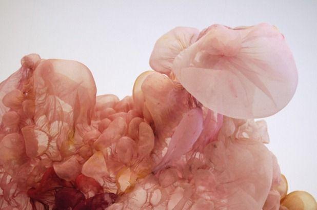 installations by lisa kellner