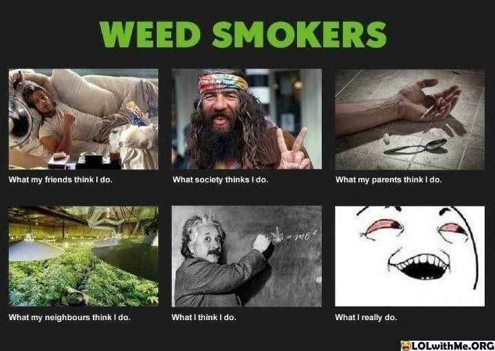 So terribly true hahahaCannabis, Memes, True Romance, Funny Pictures, Perception, Weed Smokers, So True, True Stories, Stoner