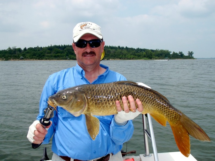 Kansas fly fishing for carp kansas outdoors pinterest for Trout fishing in kansas