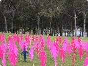 BCNA National Summit 2013 | Breast Cancer Network Australia