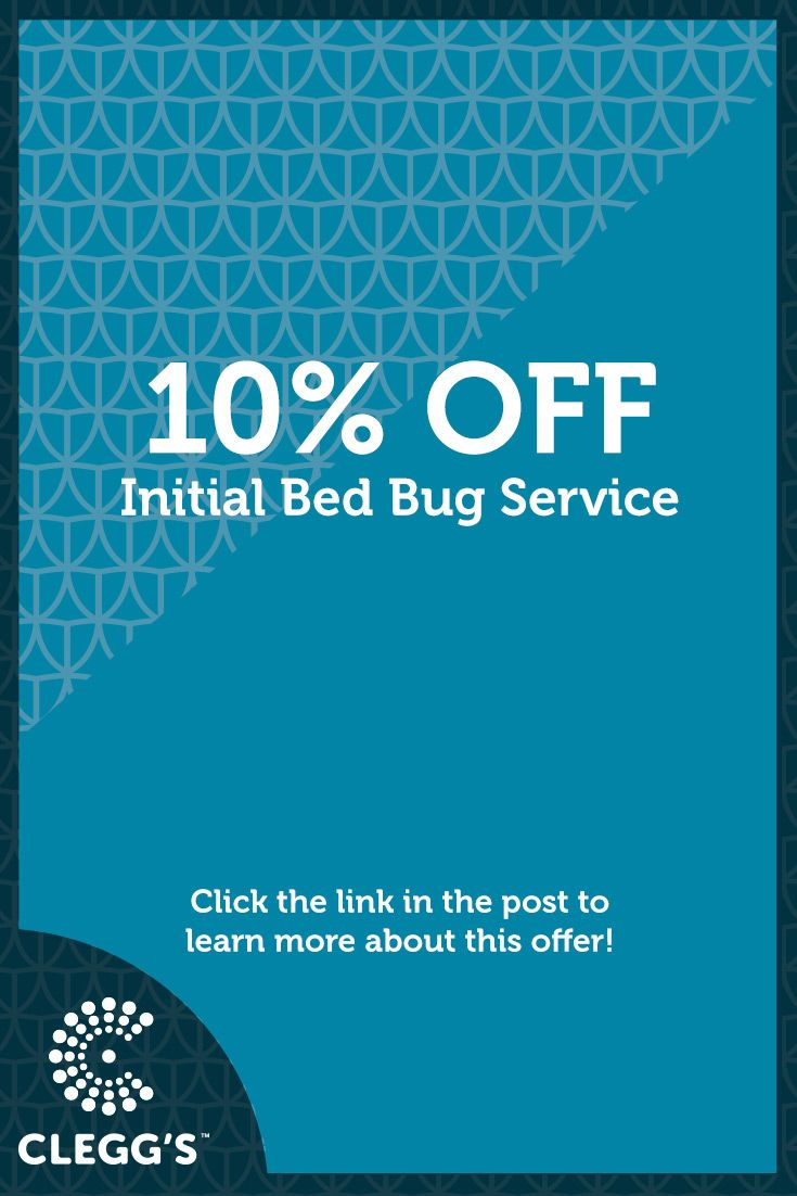 10% Off Initial Bed Bug Service
