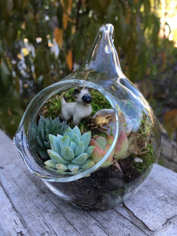 Succulent Terrarium Globe Ornament with Siamese by EdenCondensed
