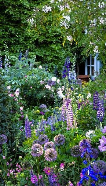 Cottage Gardening http://www.southernliving.com/home-garden/gardens/cottage-gardening-everyone