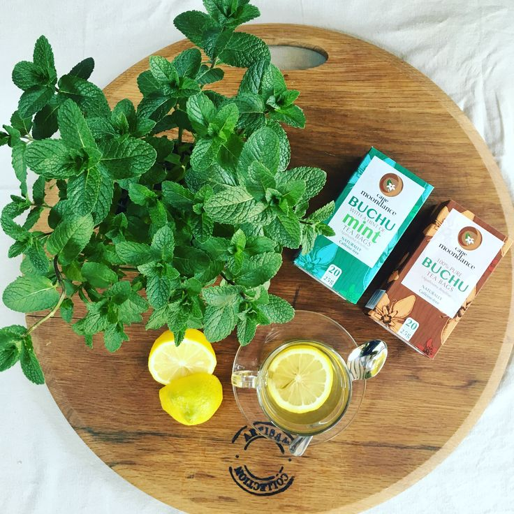Cape Moondance 100% Pure Buchu Tea & Cape Moondance Buchu tea with a hint of Mint