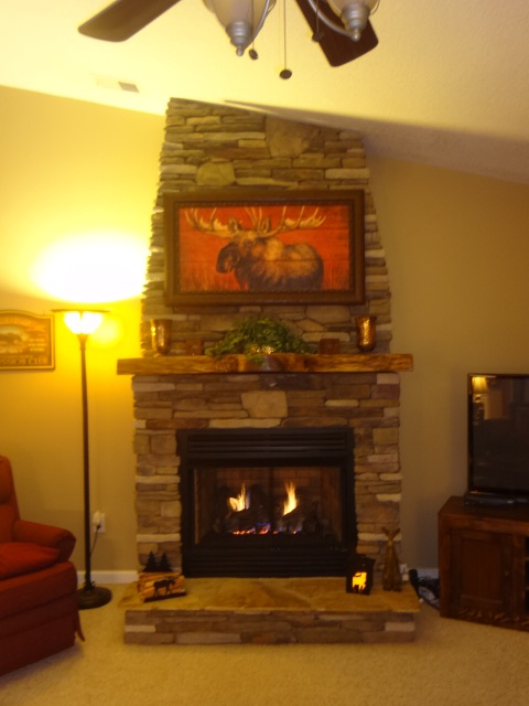DIY ventless gas log fireplace my husband and I built for ...