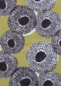 Seed Pods - Alice Daisy Newman