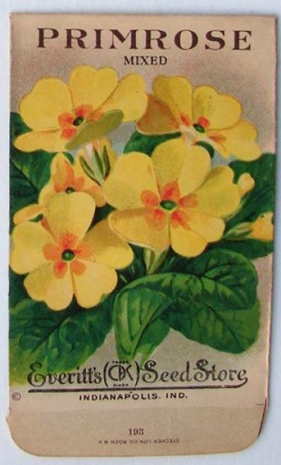 EVERITT'S SEED STORE,  Primrose 193, Vintage Seed Packet
