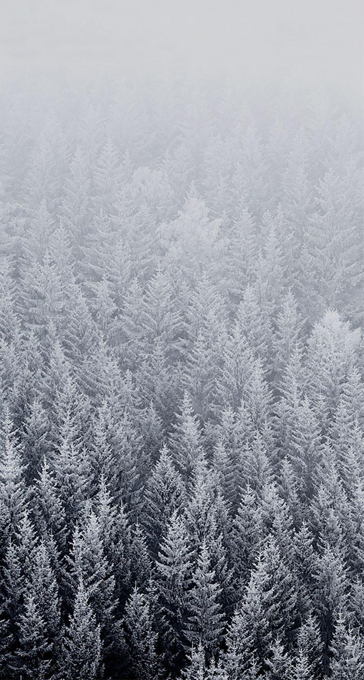 Wallpaper iphone winter -  Iphone6wallpaper Com Stock Wallpaper Winter Iphone