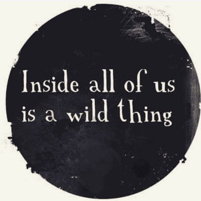 Bring out your wild side Padders, and buy something daring and fun!  Be brave! We've got some wild things!  #cpadmusing #cpadquote #cpadlifestyle #wildthing #bedaring #release #havefun :camera: #bohemian_trading_post
