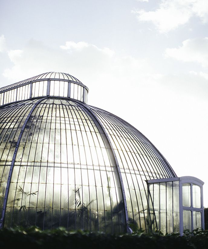 Kew Gardens . Greenhouse . London England
