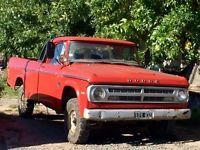 Particular vende Pickup Dodge D200 año 77 larga y alta, motor Perkins 6 1987 muy bueno. Titular al día!O permuto menor o mayor valor.