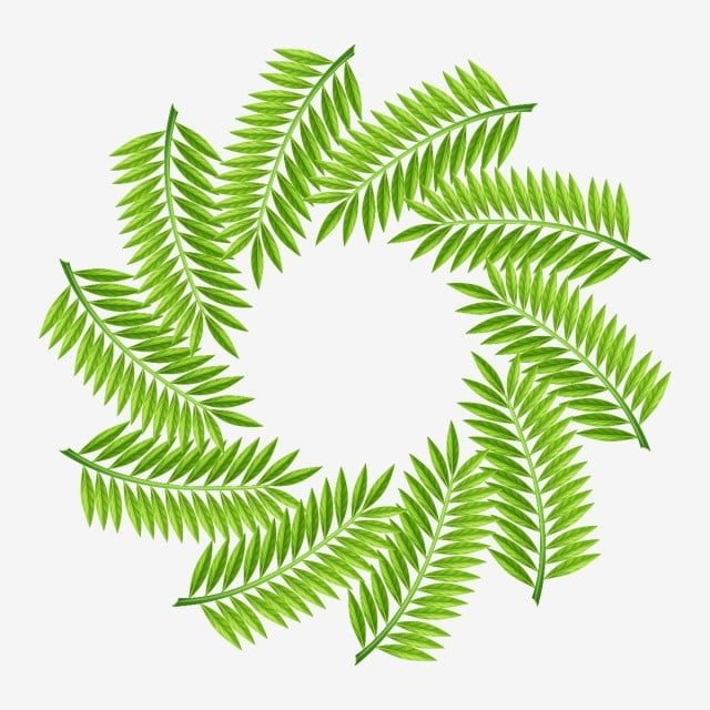 Forest Tropical Leaves Wreath Decoration Tropical Flowers Forest Tropical Leaf Leaf Png And Vector With Transparent Background For Free Download Spring Flowers Background Tropical Flowers Leaf Wreath