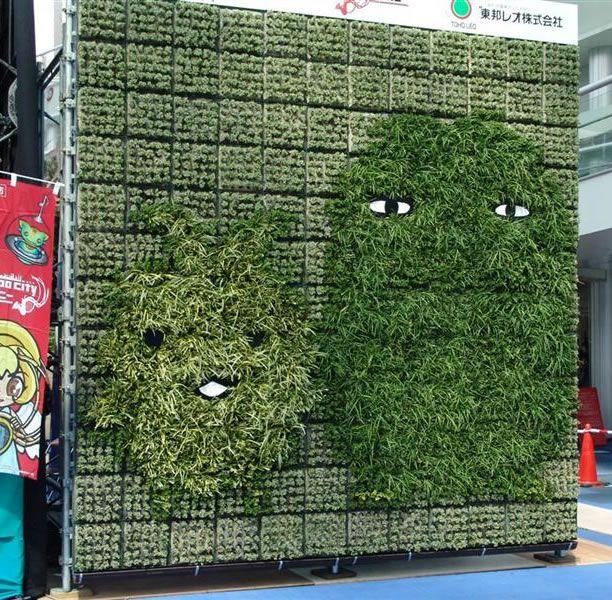 growing a green wall | gardenopolis