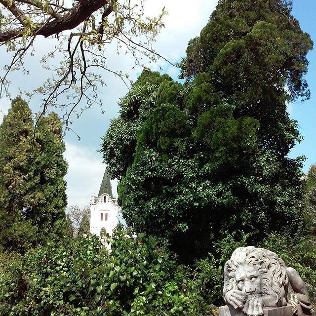 Arboretum Mlynany 🍁🌳🌲