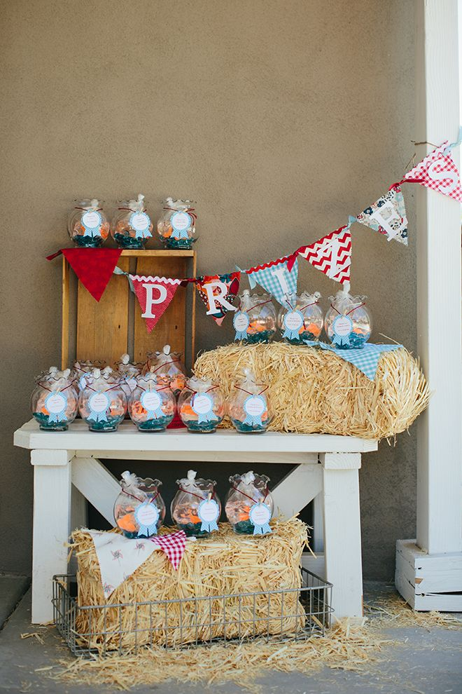 {Party Feature} Vintage Country Fair Party!