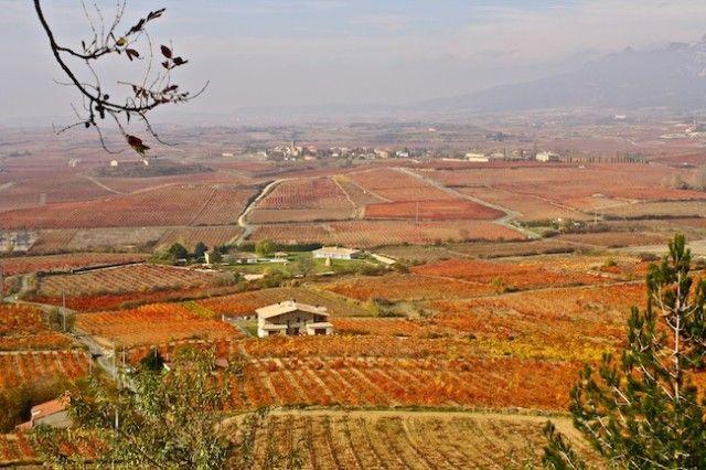 Stop #Overlooking La Rioja, Spain!