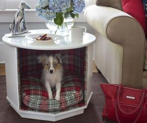 Octagon tables were quite in trend few decades ago and can now be bought for few bucks in garage sales. The picture slideshow shows how such a table is converted into beautiful end table with a pet bed.