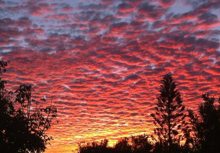 SUNday SUNset from Noosa Hill.