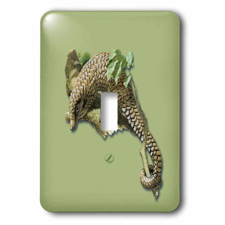 3dRose Vintage Pangolin or Scaly Anteater in a Tree, Single Toggle Switch