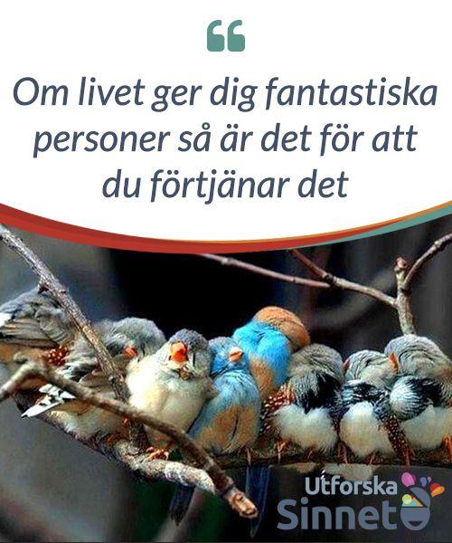 Om #livet ger dig fantastiska #personer så är det för att du förtjänar det  Om livet ger dig #fantastiska personer så är det för att du #förtjänar det, för bra saker faller #inte från skyn för intet.