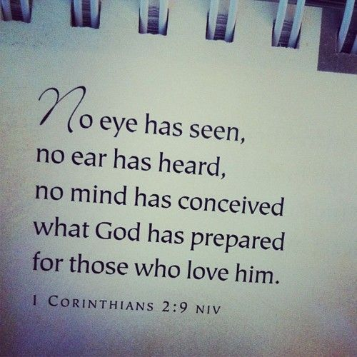 No eye has seen, no ear has heard, no mind has conceived what God has prepared for those who love him.