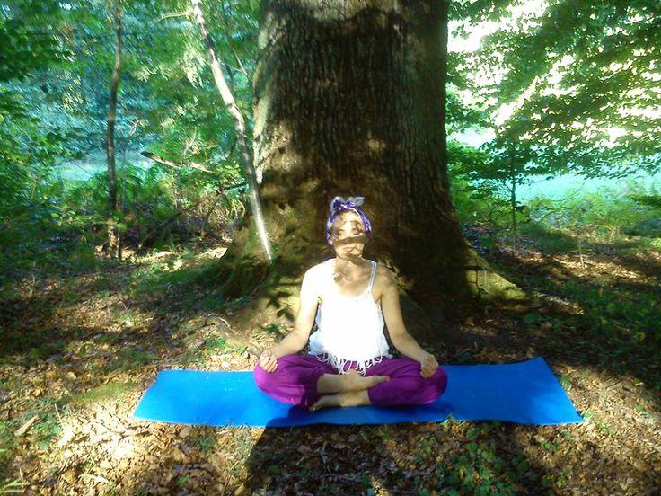 Joga na łonie natury, medytacja, stare drzewa, Kaszuby; Joannna Kas