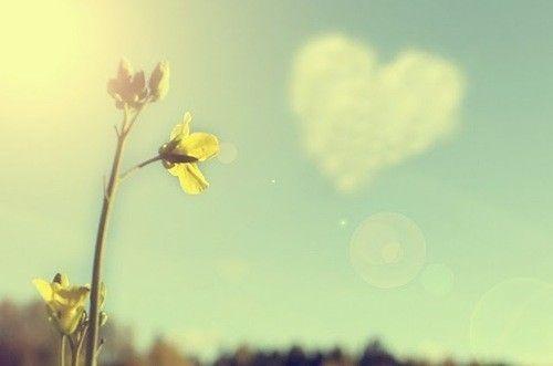 O amor de DEUS: ✍Nada é maior que o amor de Deusღ