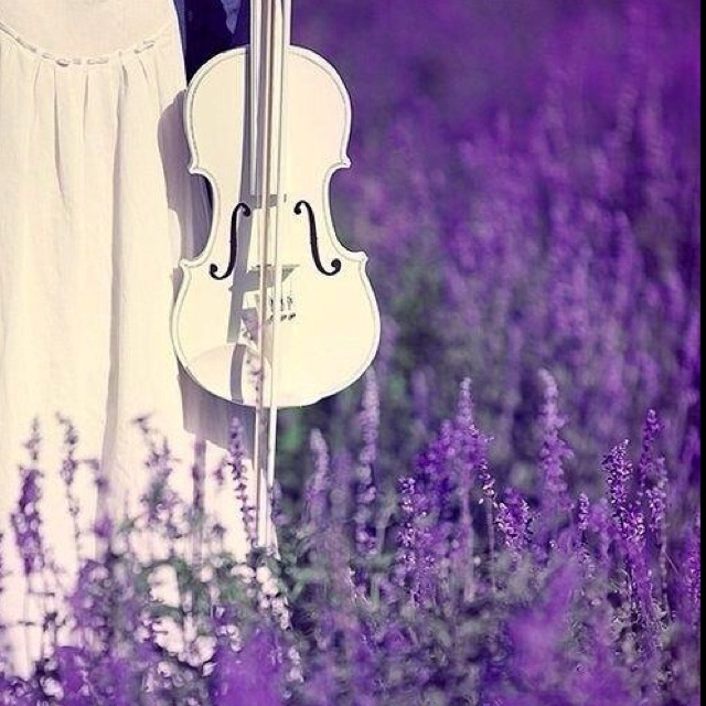Pin by Tanya Dooley on My favourite colour- PURPLE ...