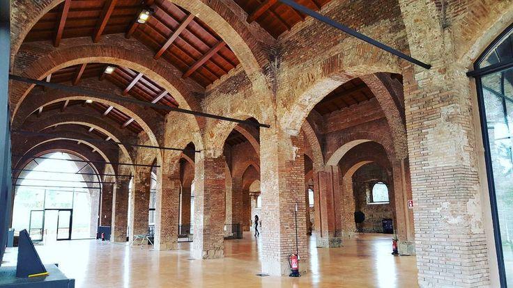 Una meraviglia gli Arsenali di Pisa... #fotografia #photography #pisa #toscana #tuscany #tuscanypeople #igerspisa #igerstosana #igersitalia #volgopisa #volgoitalia #volgotoscana #thisismyeurope #instalike #instalife #architettura #architecture #l4l #like4like #likeforlike #fotografi_italiani