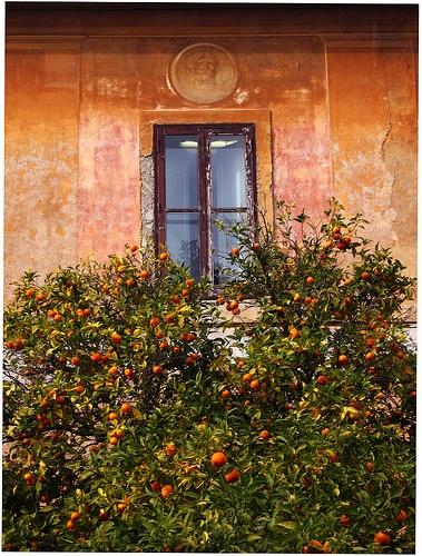 Europe // Villa Borghese- Roma // #monogramsvacation