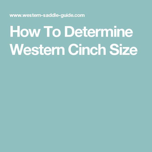How To Determine Western Cinch Size