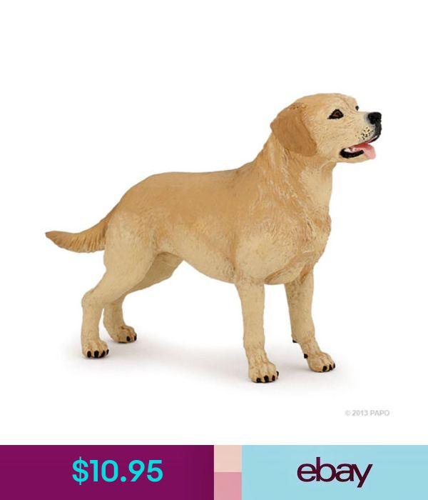 Animals Papo 54029 Labrador Dog Model 9 5cm Ebay Collectibles Dog Modeling Dogs Labrador Dog