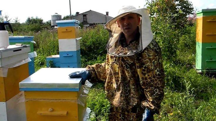 Видеофильм про пчеловодство