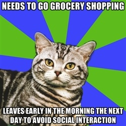Introvert Cat - needs to go grocery shopping leaves early in the morning the next day to avoid social interaction