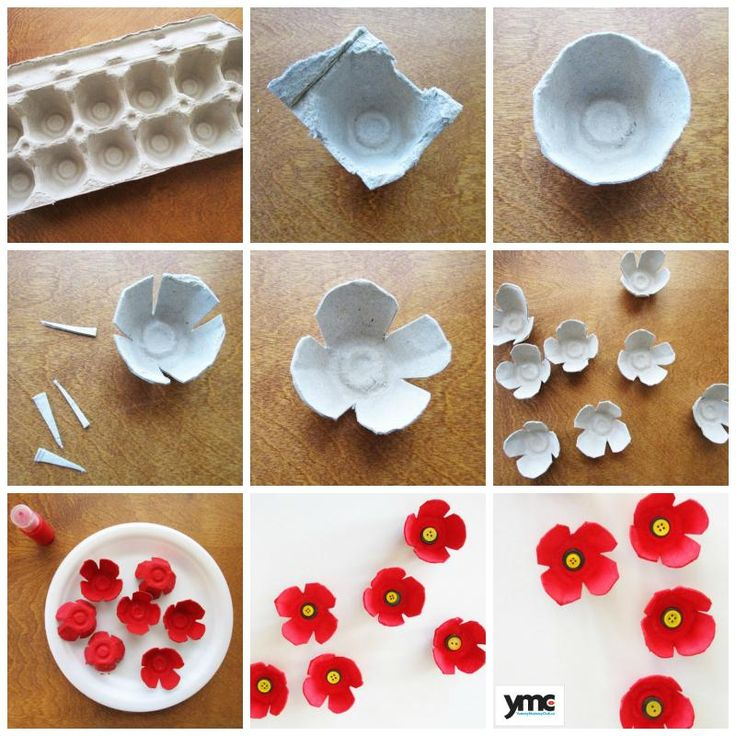 How to make poppies out of egg cartons.                                                                                                                                                                                 More